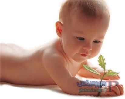 -بيبي-واطفال-حديثي-الولادة-13 صور أطفال صغار, اجمل صور بيبي, صور اطفال بغمازات, صور أطفال 2018