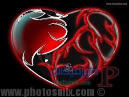 قلوب رمانسية 3