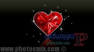قلوب رمانسية 6