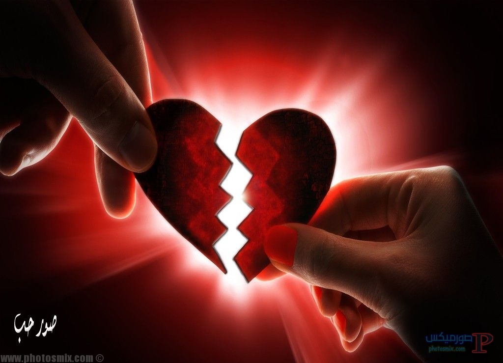 قلوب 8