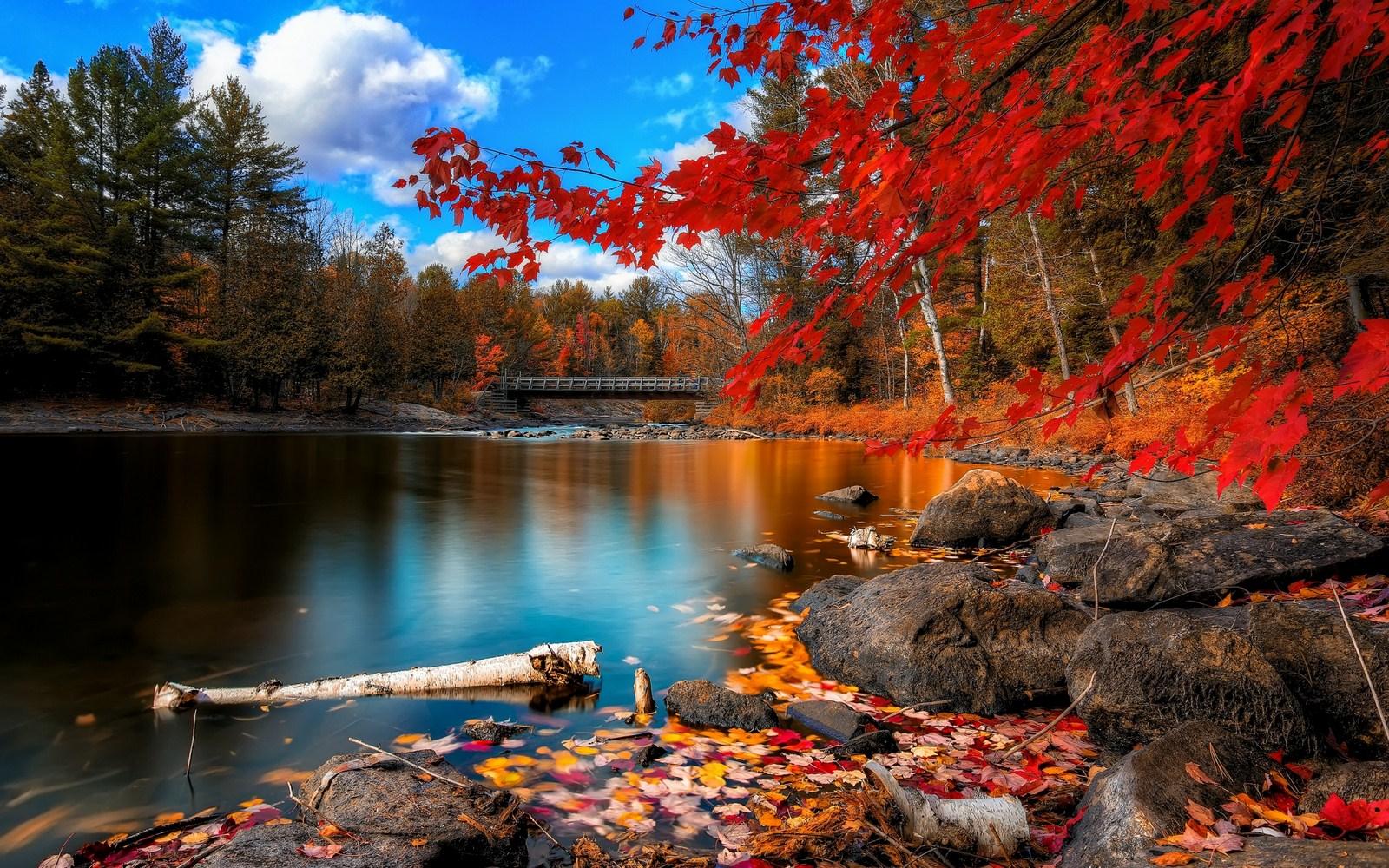 أجمل صور مناظر طبيعية 17