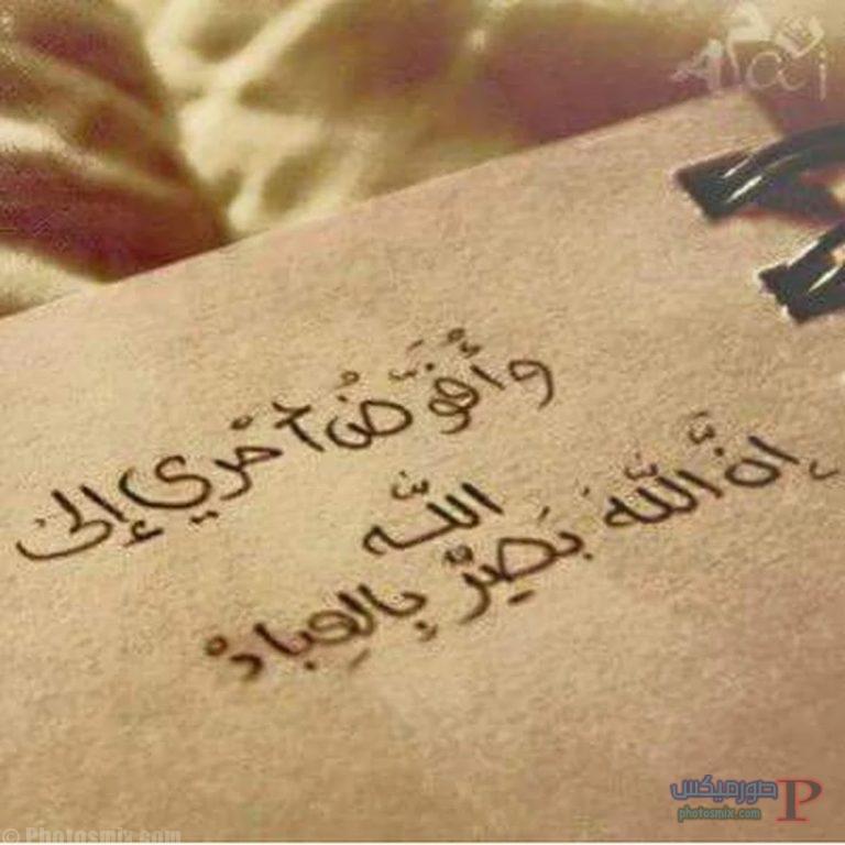 صور قرآن 8