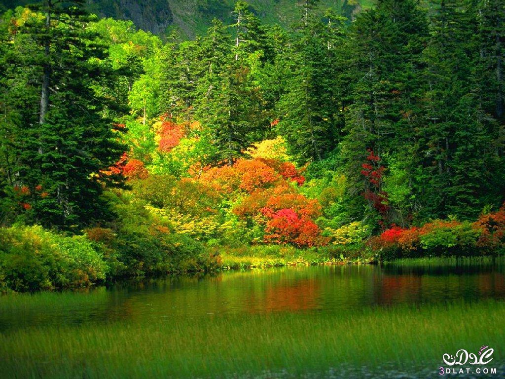 صور طبيعية خلابة صور خلفيات طبيعة 13