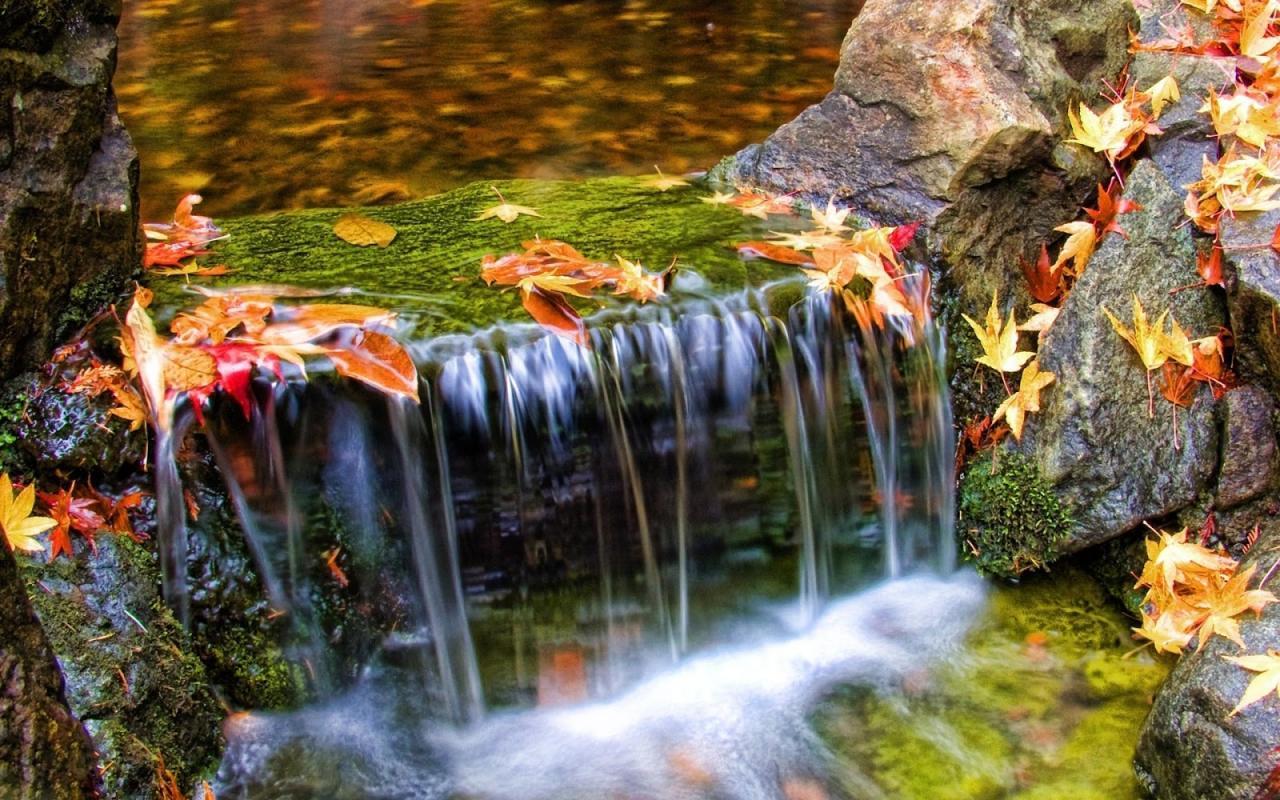 صور طبيعية خلابة صور خلفيات طبيعة 14