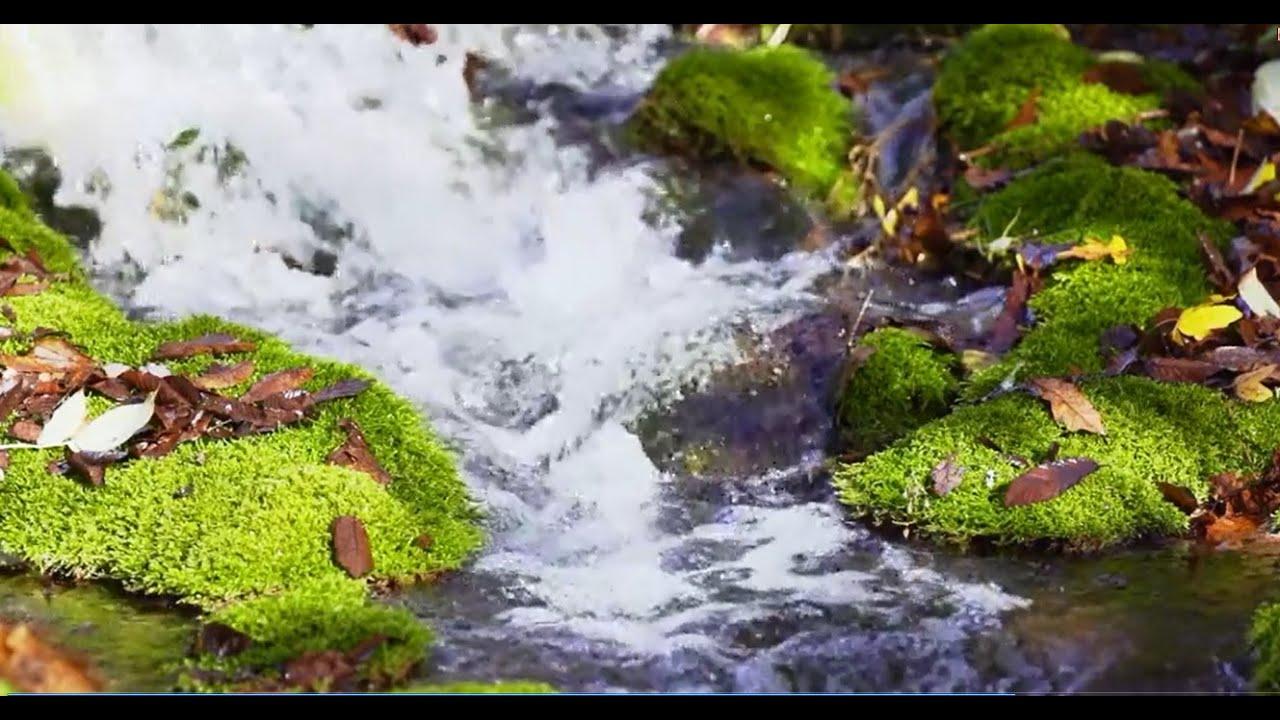 صور طبيعية خلابة صور خلفيات طبيعة 27