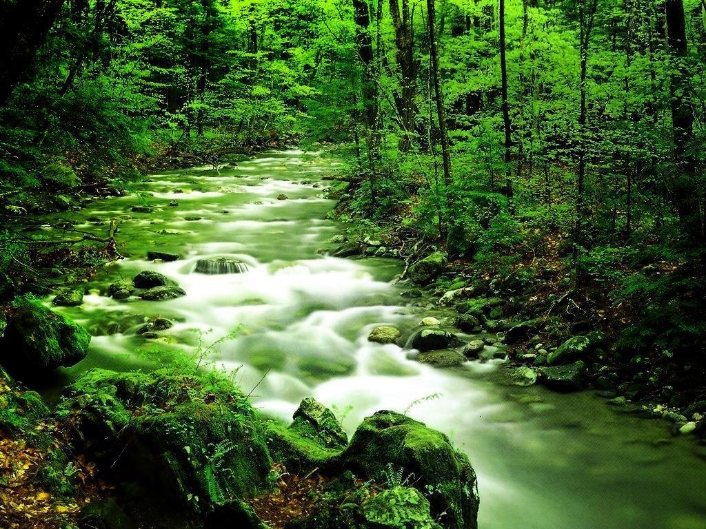 صور طبيعية خلابة صور خلفيات طبيعة 3