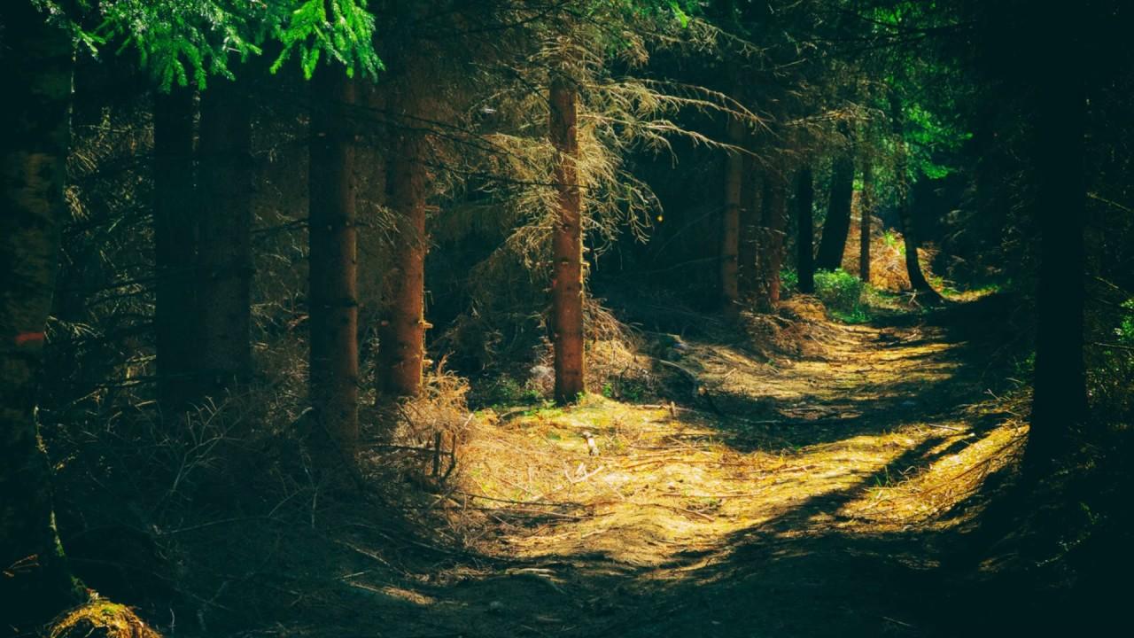 صور طبيعية خلابة صور خلفيات طبيعة 4