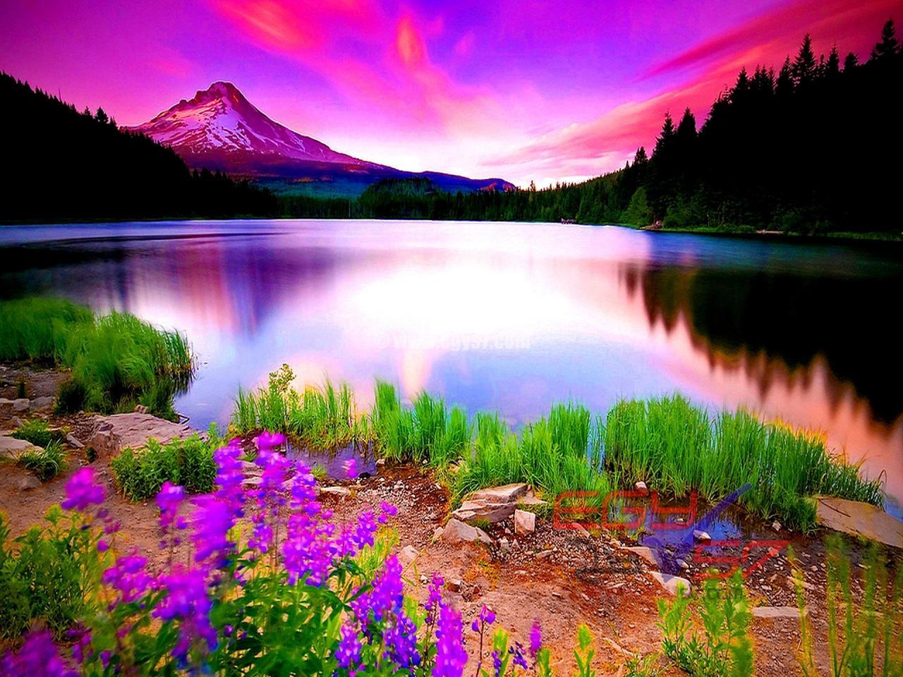 صور طبيعية خلابة صور خلفيات طبيعة 8