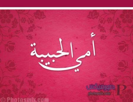 عن فضل وحنان الامهات 13