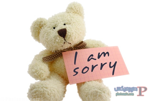 رسائل اعتذار جميلة 2
