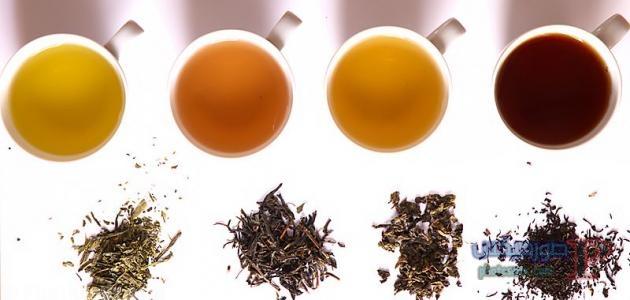 الشاي في العالم