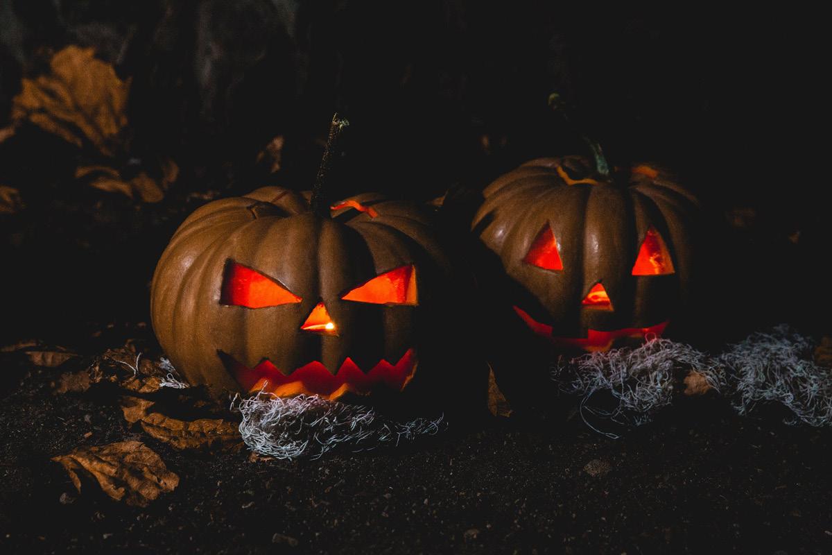 اجمل صور هالوين 10