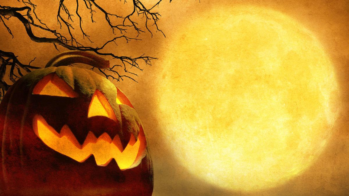 اجمل صور هالوين 2