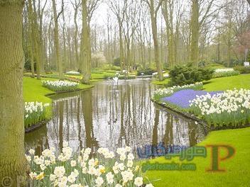 الهولنديه صور ساحره لمدينه امستردام 14