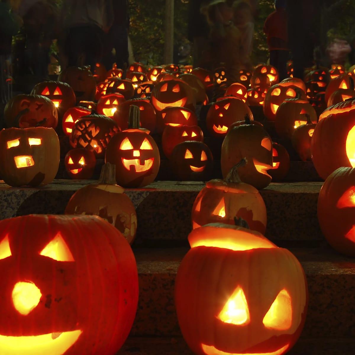 صور هالوين جميلة 2020 صور عيد الهالوين صور Halloween 17