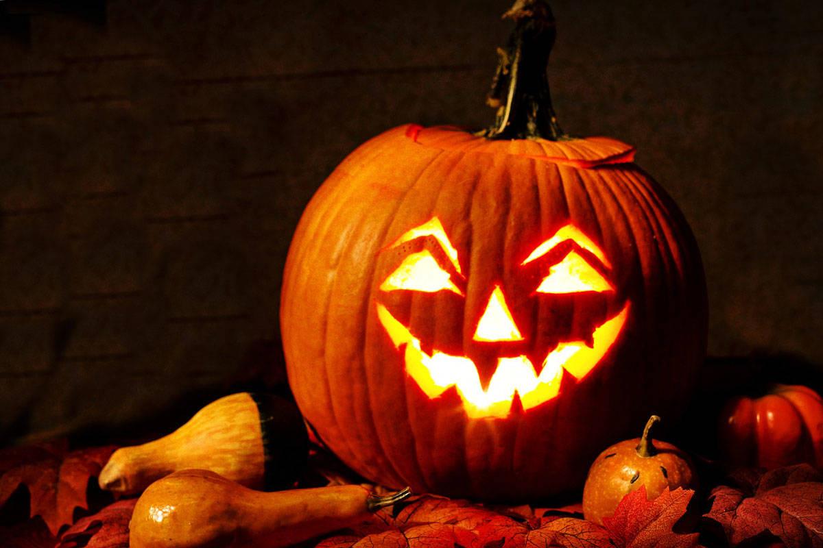صور هالوين جميلة 2020 صور عيد الهالوين صور Halloween 19