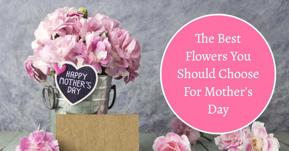 عيد الأم 2020 أشعار عن الأم يوم الأم رمزيات عن الأم 1