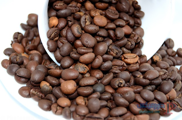 untitled فوائد واضرار القهوه والشاي انواعها منشئها تاريخها
