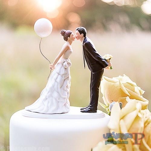خلفيات عن حفل الزفاف 21