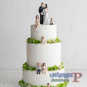 خلفيات عن حفل الزفاف 22