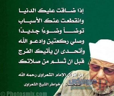 صور خلفيات الشيخ الشعراوي 20