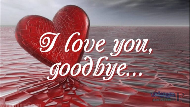 i love you 11