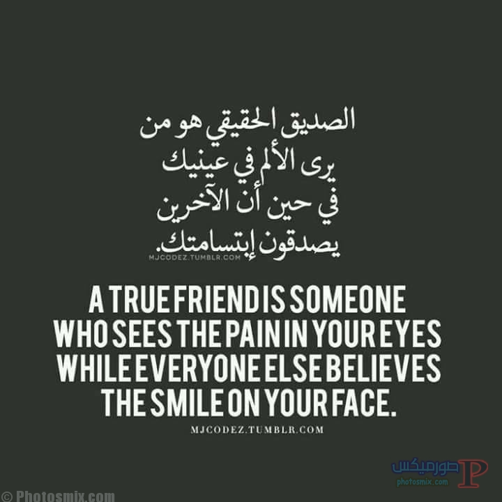 عن الصداقه 5