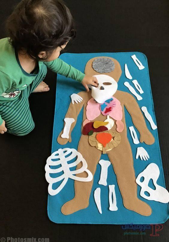 تعليم الاطفال اجزاء الجسم بالكرتون 4