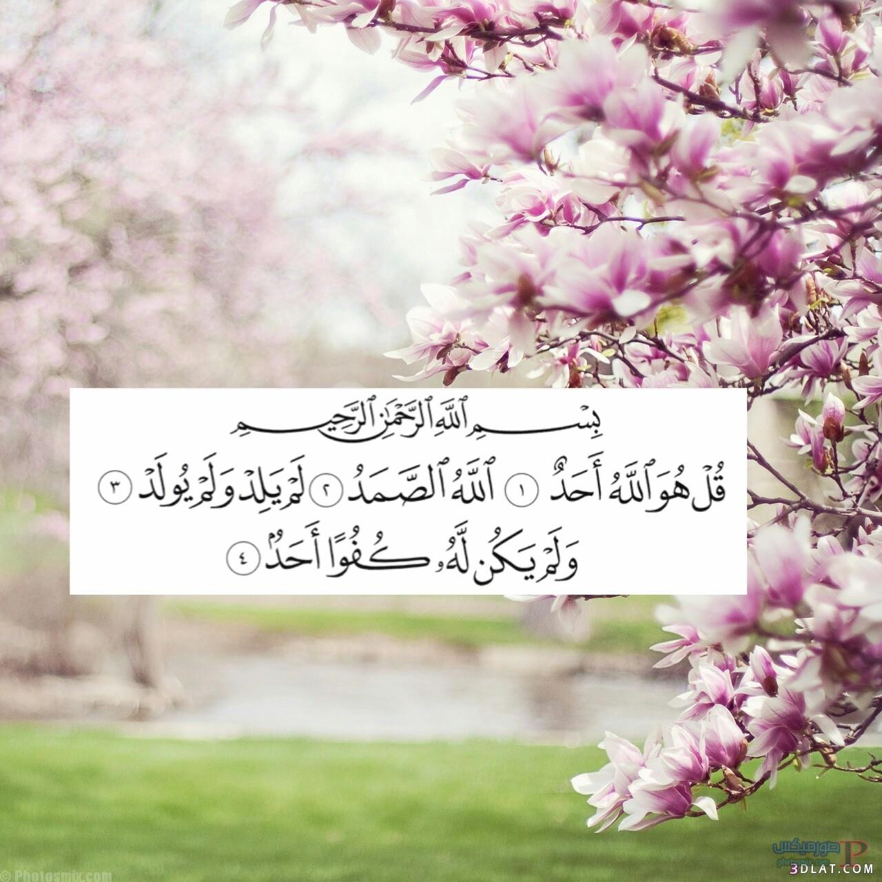 ايات قرآنية