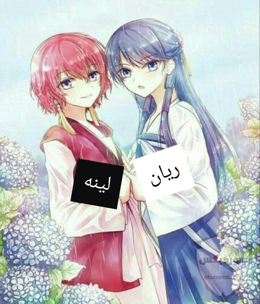 مدح الصديق 6