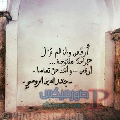 dfae87bb78799da0fe9bcc688373d28c-sufi-quotes-poem-quotes جداريات رومانسية وحزينة ومضحكة، جداريات وكتابات علي الحوائط