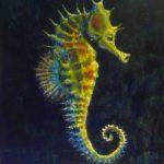 -حصان-البحر-حياة-حصان-البحر-وأنواعة-صور-ميكس-15-150x150 صور حصان البحر حياة حصان البحر وأنواعة
