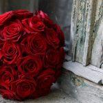 -ورد-أحمر-وفوائد-الورد-الأحمر-صور-ميكس-20-150x150 صور ورد أحمر وفوائد الورد الأحمر