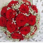 -ورد-أحمر-وفوائد-الورد-الأحمر-صور-ميكس-27-150x150 صور ورد أحمر وفوائد الورد الأحمر