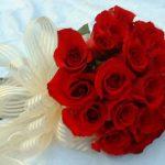 -ورد-أحمر-وفوائد-الورد-الأحمر-صور-ميكس-31-150x150 صور ورد أحمر وفوائد الورد الأحمر