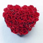 -ورد-أحمر-وفوائد-الورد-الأحمر-صور-ميكس-34-150x150 صور ورد أحمر وفوائد الورد الأحمر