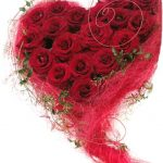 -ورد-أحمر-وفوائد-الورد-الأحمر-صور-ميكس-35-150x150 صور ورد أحمر وفوائد الورد الأحمر