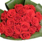 -ورد-أحمر-وفوائد-الورد-الأحمر-صور-ميكس-49-150x150 صور ورد أحمر وفوائد الورد الأحمر