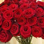 -ورد-أحمر-وفوائد-الورد-الأحمر-صور-ميكس-50-150x150 صور ورد أحمر وفوائد الورد الأحمر