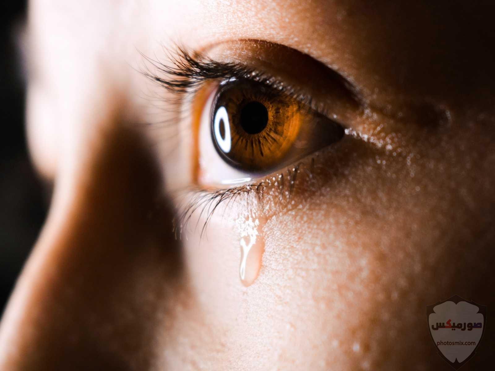 صور حزن وفراق وعتاب ودموع في ألبوم كامل 8