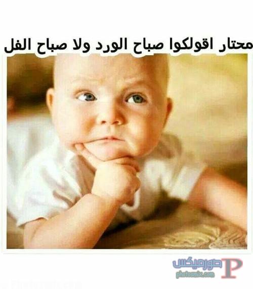 صور مضحكه للفيس بوك وتويتر 2
