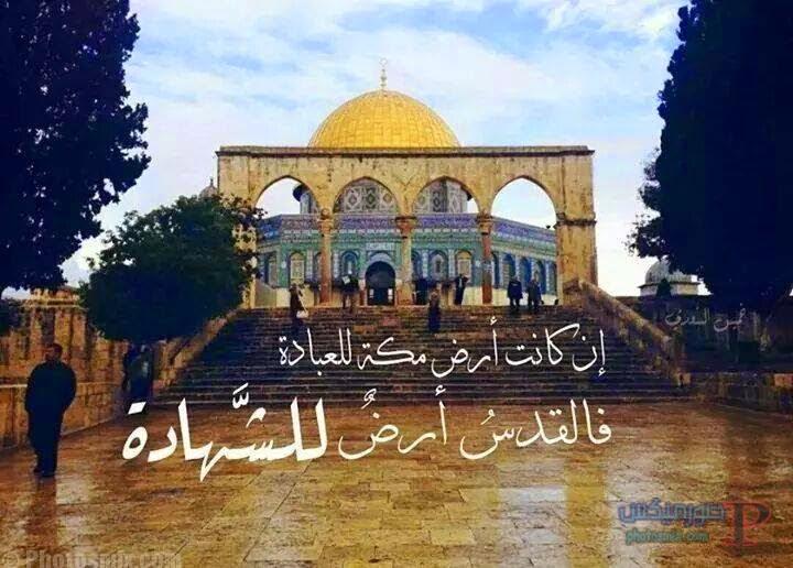 صور معبره عن القدس 1