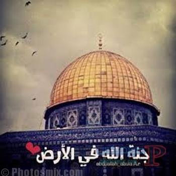 صور معبره عن القدس 4