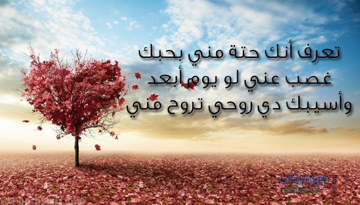 عن الحب والرومانسيه 2019 5