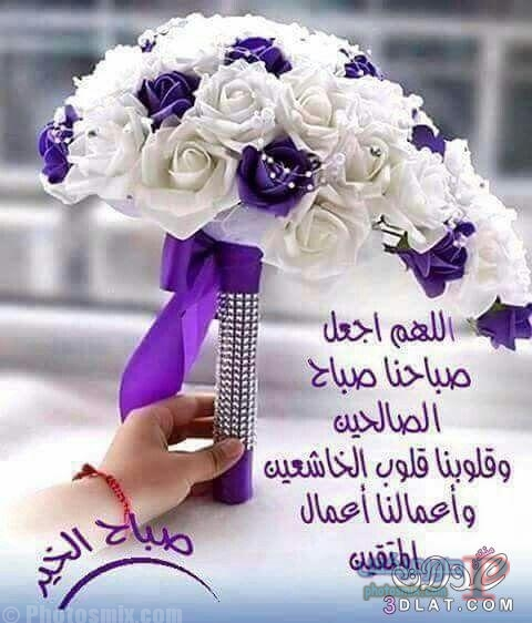 صباح الخير جديدة 2019 1