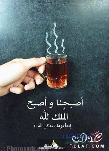 صباح الخير جديدة 2019 16