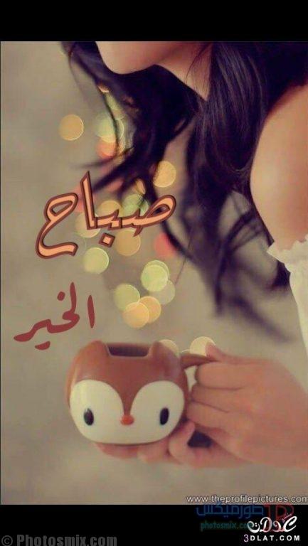 صباح الخير جديدة 2019 17