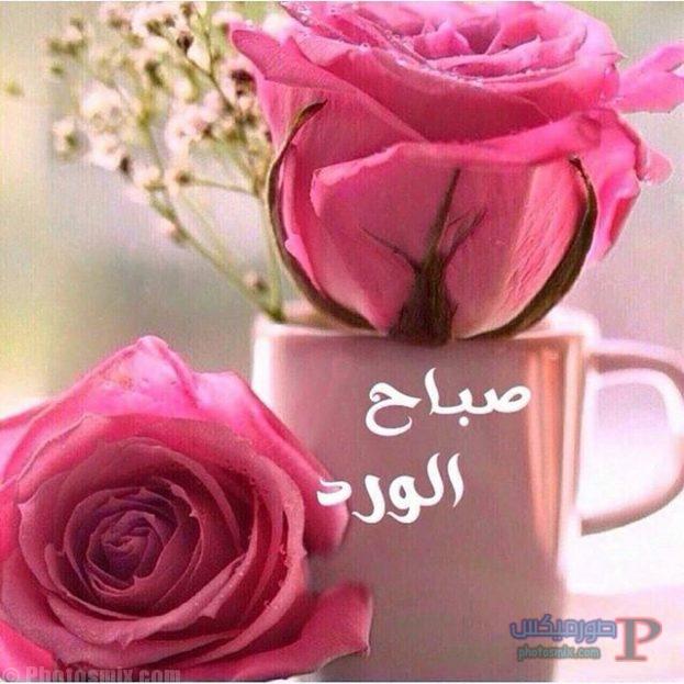 صباح الخير جديدة 2019 30