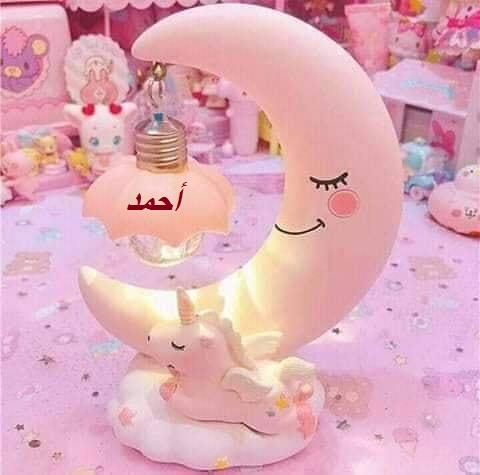 57015600 2223923577660875 631462825050505216 n 6 - صور فوانيس رمضان 2019, صور فوانيس رمضان خشب, صور فوانيس رمضان مكتوب عليها الإسم