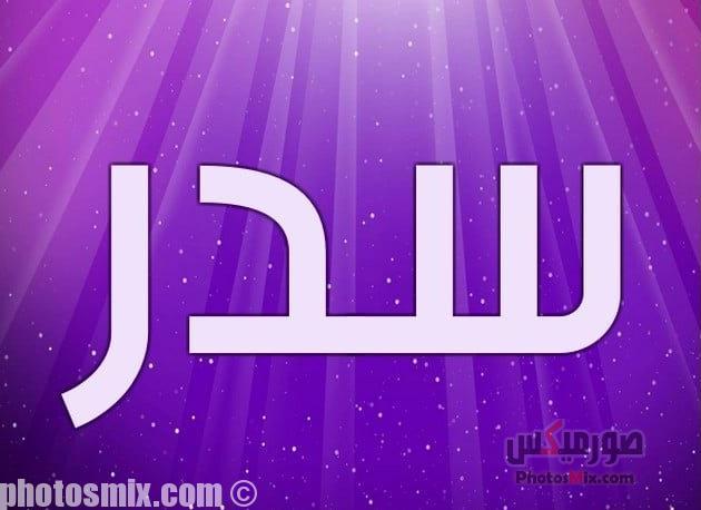 Sidr - صور أسماء أولاد 2019, صور أسماء بنات جديدة, صور أسماء بنات وأولاد بمعانيها